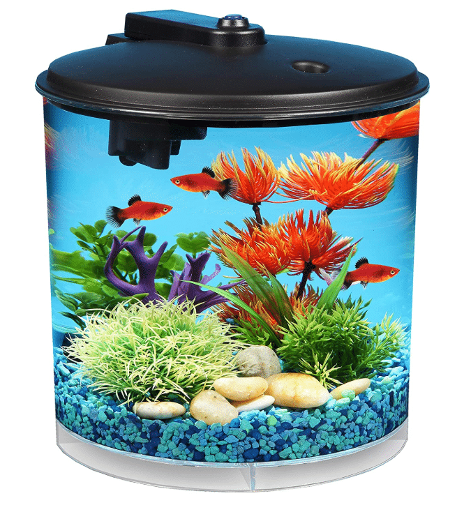 AquaView 2-Gallon 360 Fish Tank