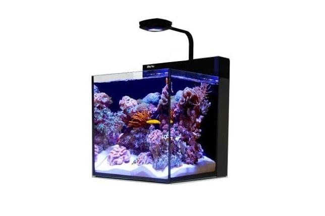 Red Sea Max Nano Aquarium 20 gal