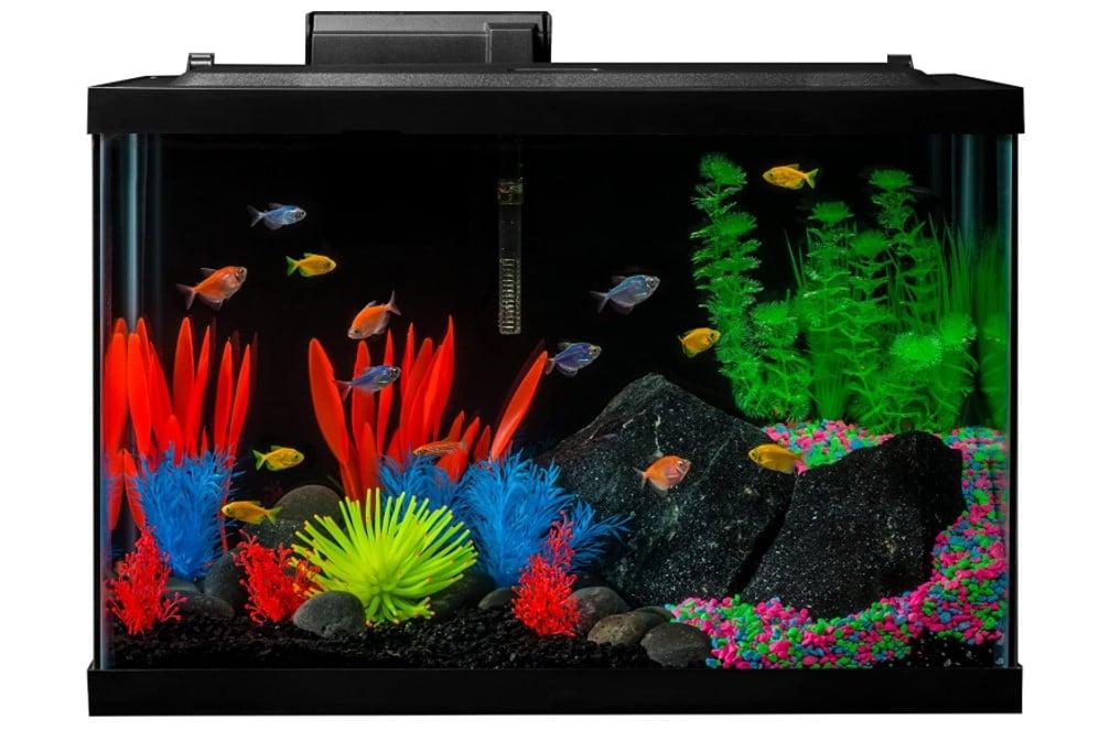 GloFish 15 Gallon Fish Tank Kit
