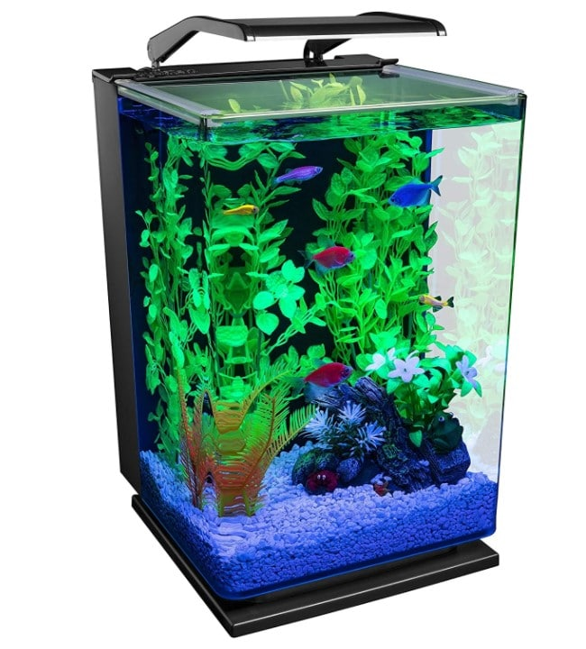 GloFish Aquarium Kit 5 Gallon Fish Tank