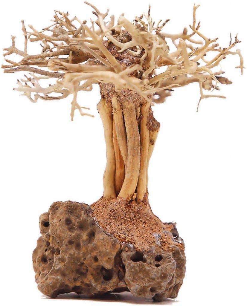 Bonsai Driftwood Aquarium Tree on Rock RS (4 Inch Height) Natural