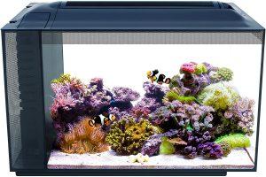 Fluval Sea EVO Marine Aquarium Kit
