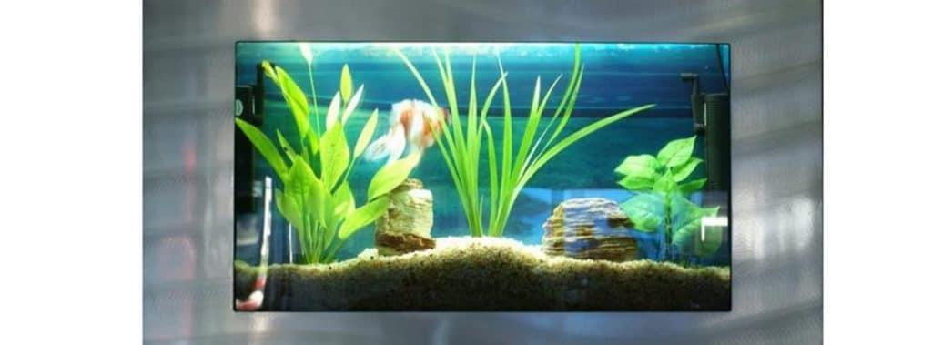 Bayshore Aquarium Rectangular Wall Aquarium